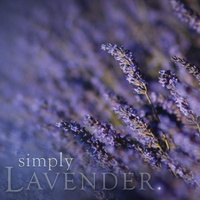 Lavender natural soy jar candle - 100% Australian Made