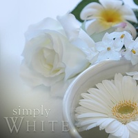 White natural soy jar candle -  100% Australian Made