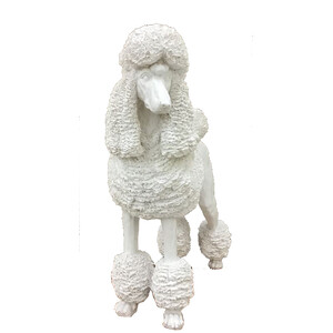 Poodle white - CLICK & COLLECT ONLY